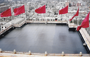 roof-china-great hall of the people1.png